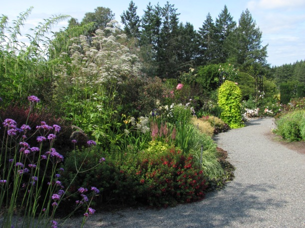 2019-08 Horticulture Centre of the Pacific, Barb Gorges