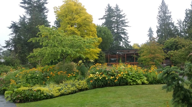 2019-08 VanDusen Botanical Garden - yellow bed, Barb Gorges